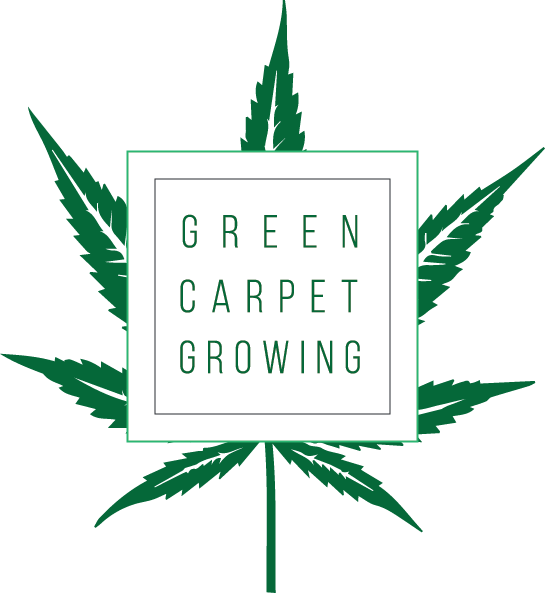 Green Carpet Growing Logo
