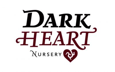 PODCAST INTERVIEW WITH CLAYTON CUTTER OF DARK HEART NURSERY