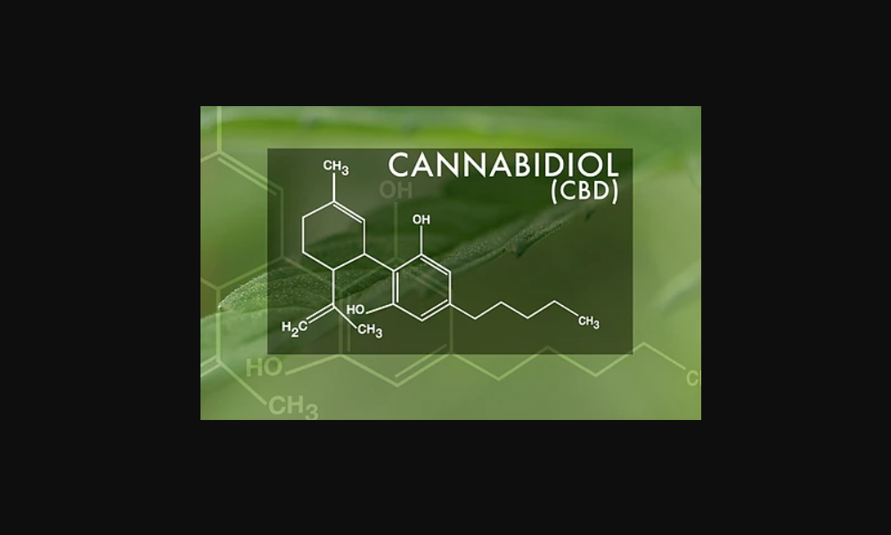 CBD Study: The Endocannabinoid System and its Modulation by CBD