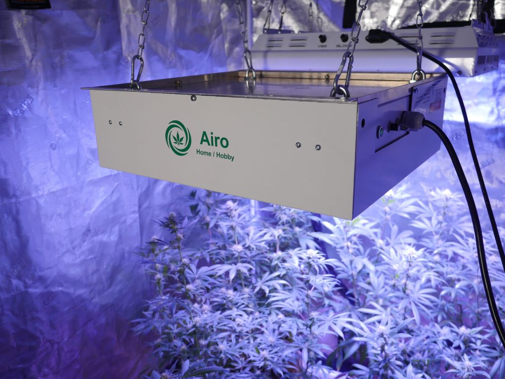 Airo Home Hobby displayed in a grow tent