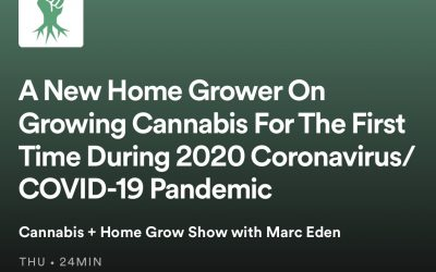 A New Home Grower On Growing Cannabis For The First Time During 2020 Coronavirus/ COVID-19 Pandemic