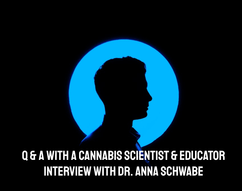 Q & A with a Cannabis Scientist, Geneticist and Educator | Interview with Dr. Anna Schwabe